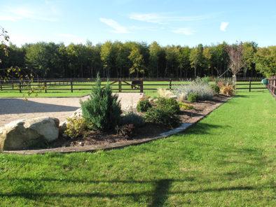 jardin et cheval